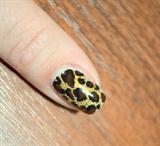 Golden leopard print (better picture)