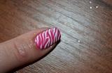 Pink and white zebra
