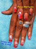 Precise Nails Ombre