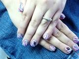 Multi. Colored Zebra