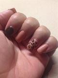 Fall Leopard