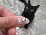 -Black cat-
