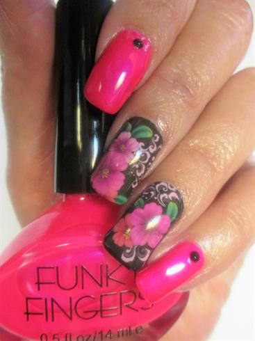 PunkRock Pink Solar