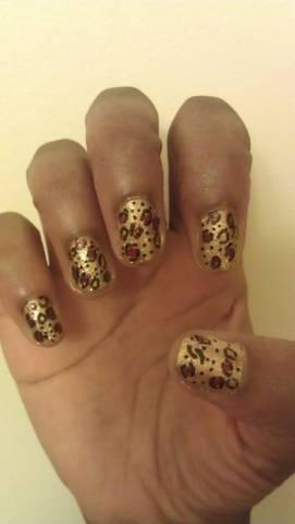Wicked Cheetah 2