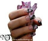 2011-01-29 Nail Technology