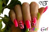 2011-01-08 Nail Technology