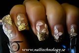 2009-10-15 Nail Technology