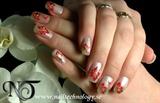 2010-12-03 Nail Technology