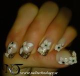 2009-10-06 Nail Technology