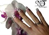 2009-08-25 Nail Technology