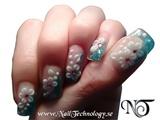 2009-02-26 Nail Technology