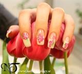 2011-03-15 Nail Technology