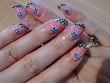 ibicus nail art