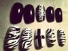 Zebra and Croses