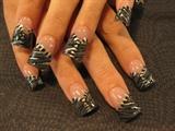 chrome zebra