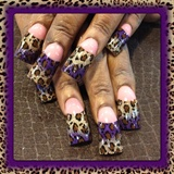 Purple and leopard