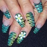 Zebra flowers