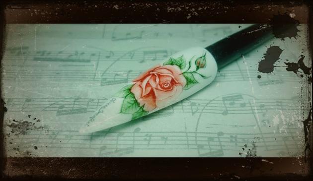Aquarelle Rose