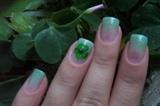 Mint Nature