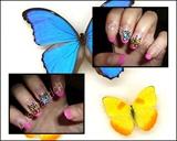 Blue yellow butterflies nails