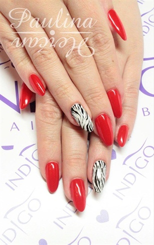 Red Zebra Indigo