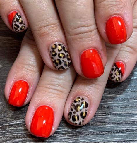 Red Cheetah