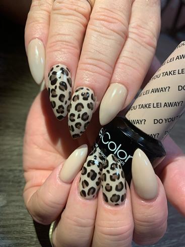 Nude Cheetah