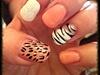 Leopard/tiger Design