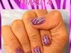 Purple & Pink Zebra On 10/23/14