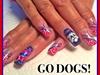 Fresno State Football Go Dogs!