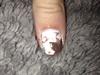 Fall Nails!!!🍂🍁🍂