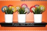 Purjoi Nail Studio