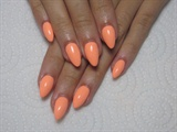 Almond Tangerine