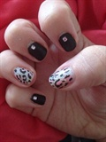Leopard and Matte