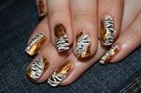 Leopard and zebra