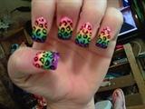 gradient rainbow with leopard