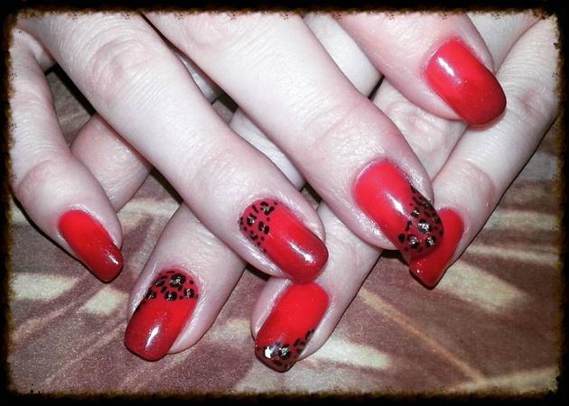Red Cheeta