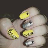 Yellow Cheeta