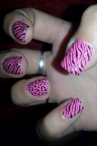 Zebra And Leaped Nails.:)