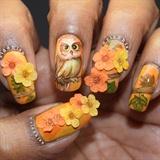 Owl On An Oak
