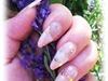 Exteme Summer Stiletto Nails
