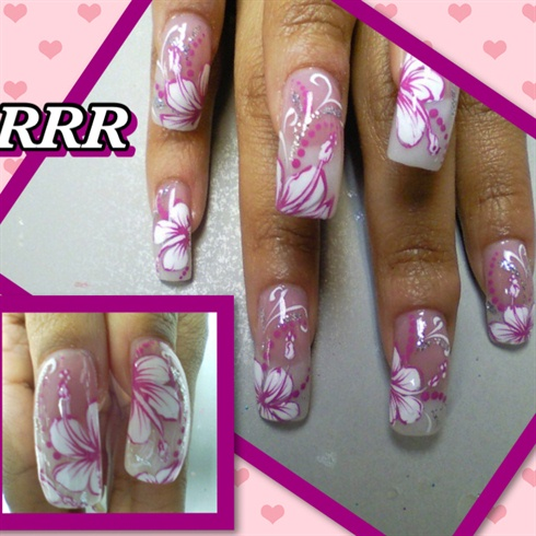 White & Pink Hibiscus