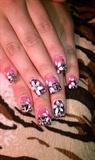 Pink Crack-Flowers