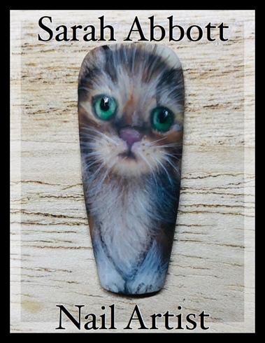 Freehand Kitten