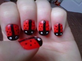 Lady Bugs