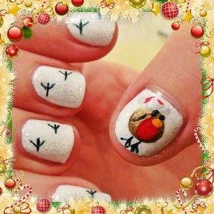 Christmas Robin Nail Art Gallery