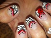Red,Black, White Zebra