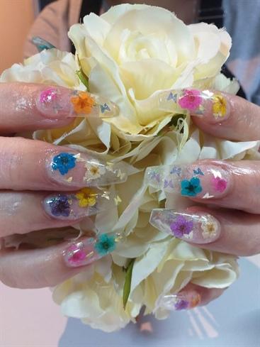 Flowers N Butterflies