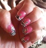 Zebra Drip