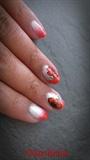 poppies_1